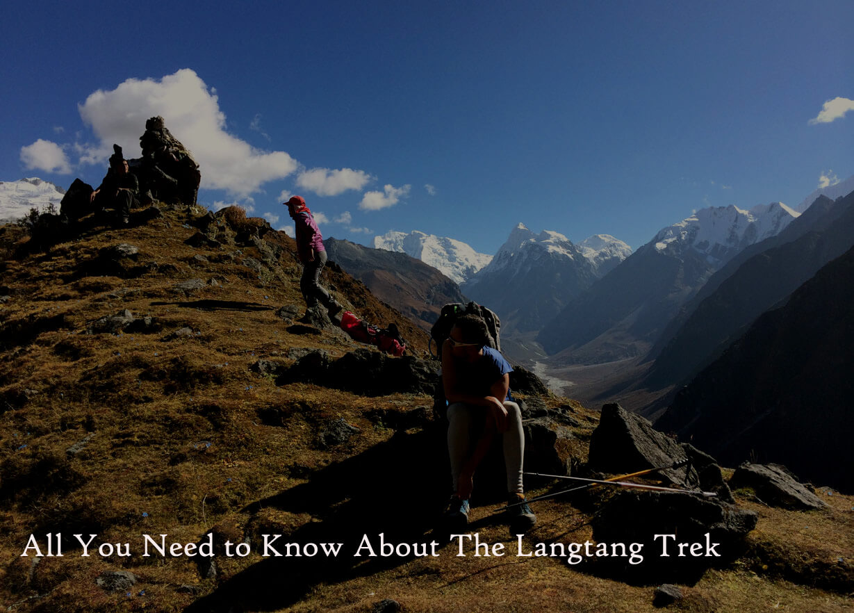 All You Need To Know About The Langtang Trek | Langtang Valley Trek